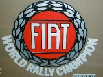SMALL FIAT WORLDRALLY CHAMPION
